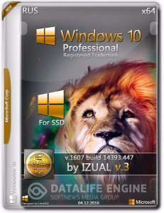 Windows 10 Professional 10.0.14393 Version 1607 - VLSC by IZUAL v.3 SSD [Rus]